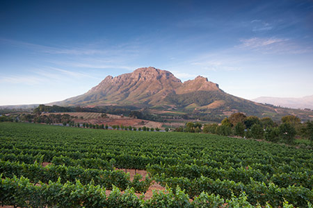 Wemmershoek Mountains, Franschhoek, South Africa