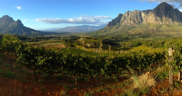 Private / Custom Wine Tours